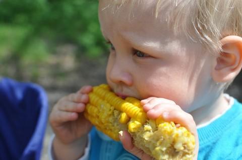 B2ap3 Thumbnail Child 559415 960 720